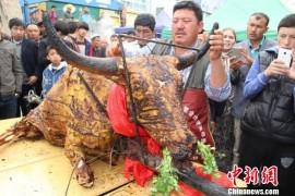 新疆烧烤大师烤出250公斤全牦牛(图)