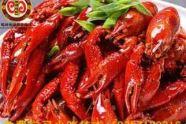 十三香小龙虾培训-杭州哪里有十三香小龙虾培训?