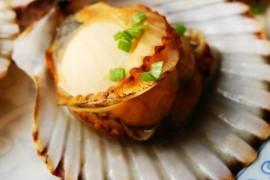 原味烤扇贝的做法_原味烤扇贝的家常做法大全怎么做好吃